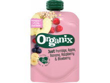 Organix just porrige apple banana raspberry blueberry