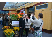 Gry Forsell på Blomsterfrämjandets och MixMegapol unlugged tulpankonsert