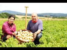 200722-pm-sr-richerode-fruehkartoffeln