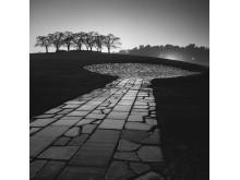 Skogskyrkogården/The Woodland Cemetery, Peter Eriksson
