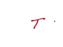 Trontveit logo white PNG