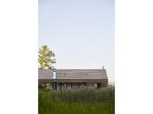 Silvernails - Panorama