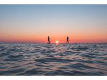 Stand Up Paddle / Visit Halland / Ron Johansson