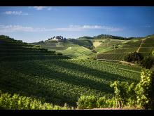 Baden vin region - slott Staufenberg vingård i Durbach