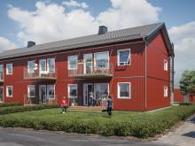 Illustration av trädgårdssida med balkong/uteplats och gräsytor, lägenheterna i BoKlok Växtriket.
