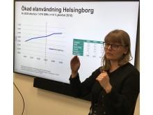 Solcellsmål Helsingborg 2035
