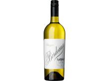 Sauvignon Bordeaux