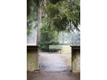 Skogskyrkogården/The Woodland Cemetery: Bänk/Bench