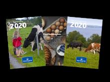 pressbild årsredovisning 2020.png
