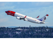 Norwegian aircraft 737-800