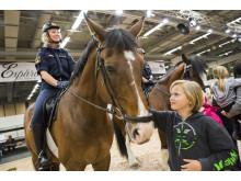 Polisens hästar fick stor uppmärksamhet