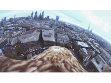 Adlerflug London_Freedom_Action Cam Mini von Sony_04