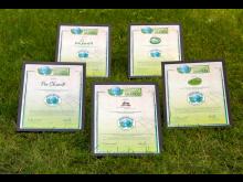 GREEN BRANDS: Auszeichnungen