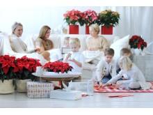 Jul med familjen och julstjärnor