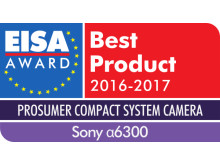 EUROPEAN_PROSUMER_COMPACT_SYSTEM_CAMERA_2016-2017_Sony_Alpha 6300
