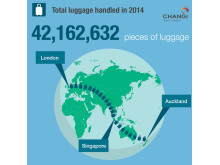 #Changi2014 - Luggage
