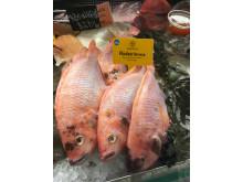 Gårdsfisk Rödstrimma ursprungsmärkt med Från Sverige i fiskdisken