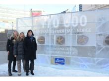 Brødsvinn - Hatting med isvegg ved Oslo S