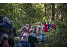På jakt efter en skymt av Billingetrollet under Sweden Outdoor Festival 2019