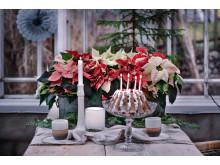 2. Julstämning med stjärnor tolkat av Åsa Myrberg, atmycasa