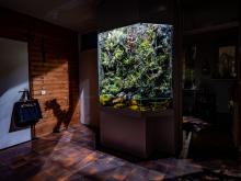© Jorrit Hoen, Netherlands, Shortlist, ZEISS Photography Award 2020