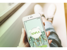 Kivra iPhone Login Mockup