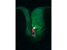 2631_1269014_0_ © Trung Pham Huy, National Awards 2nd Place, Viet Nam, Shortlist, Open competition,