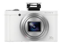 DSC-WX500
