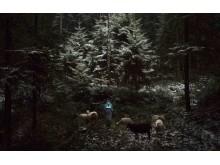 Adam-Zadlo,-Jan-Matejko-Academy-of-Fine-Arts-in-Krakow,-Poland,-Student-Focus-Shortlist,-2016-Sony-World-Photography