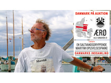 Danmarksindsamlingen 2017 Erik Kramann - sort logo