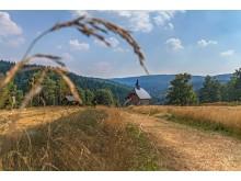 Glockenwanderweg Deutschneudorf16Foto_Uwe_Meinhold