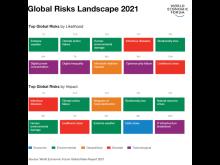 Global Risks Landscape