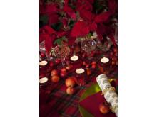 Röd vintagejul med julstjärnor 4