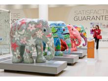 Elephant Parade visits Stoke