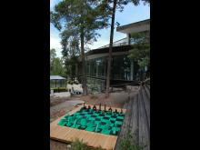 Pressbild av schackspelet