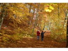 Wanderer am Großen Treppelsee