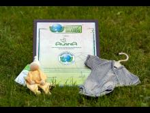 GREEN BRANDS: Auszeichnung für ALANA 2021/22