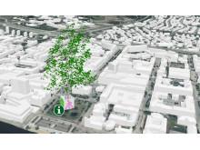 Bild trafiklöfte träd-1_baraträd