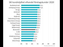 SKI elhandel foretag 2020.jpg