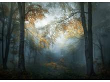© Veselin Atanasov, Winner, Open Landscape & Nature and Winner, Bulgaria National Award, 2018 Sony World Photography Awards