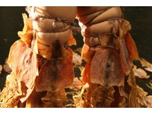 Dry Fish, YoungSoon Choo Jaquet