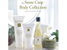 Éminence Stone Crop Body Collection