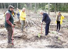 Landrat Daniel Kurth bei Baumpflanz-Aktion der Deutschen Post