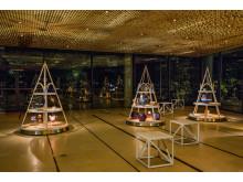 Nya multifunktionella utställningsplattformen på plats i Washington, oktober 2015. Foto: John Norrby