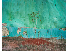 Landscape - Yan Wang Preston, UK