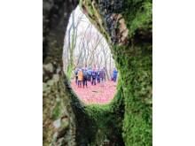 Vandregruppe set gennem et øjetræ