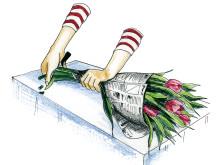 Skär av tulpanerna