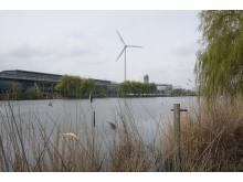 Fords fabrik i Dagenham huserar också ett 2,5 miljoner kvadratmeter stort vildmarkshabitat.