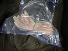 V44-20 Elamir cash