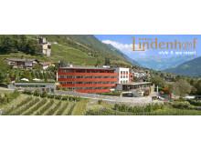 Dolce Vita Hotel Lindenhof****s